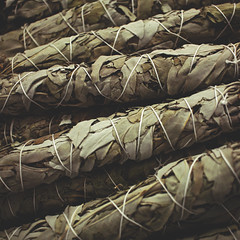 337 : 365 : VI (Randomographer) Tags: project365 plant dried salvia officinalis sage perennial evergreen subshrub stem grayish leaves wrapped bundled 337 365 vi smudging smudge white ceremonial ritual alchemy wand