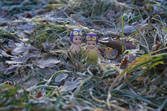 Uh ... Where is the snow? (omgdolls) Tags: sonny angels wiener wednesday owl tiger