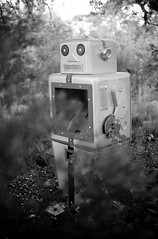 natural habitat (jollyville) Tags: 35mm blackandwhite pentax pentaxk1000 pentaxm50mmf14 k1000 kentmere kentmere100 rodinal robot