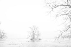 Leica M 240 & SUMMILUX-M 35mm F1.4 ASPH (leicafanboy..) Tags: outdoor japanese japan leica m 240 summiluxm 35mm f14 asph winter monochrome