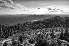 St Regis Summit (phonnick) Tags: stregis firetower mountain hills clouds trees forest hike hiking trail summit vista adirondacks saranaclake monochrome blackandwhite bw canon6d canon 6d lake