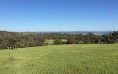 * Ironmungie Road, Dalgety NSW