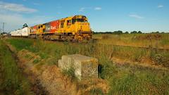 925 at Hilderthorpe old station site (Jokertrekker) Tags: dft7241 dc4628 kiwirail jokertrekker 925 hilderthorpe