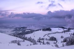 Schauinsland at Dawn (beatriceverez) Tags: schauinsland blackforest schwarzwald freiburg dawn sunrise snow winter