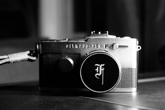 Day 6 (Garen M.) Tags: jojo nikond850 cat filmcamera buttercup penf jerry nikkor2470mmf28