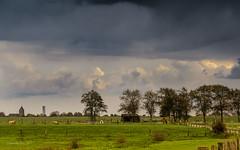 Bislicher Insel - Gleich wird es nass...- (moni-h) Tags: bislicherinsel deutschland herbst2017 landscape landschaft nrw niederrhein nordrheinwestfalen november2017 olympusm40150mmf28 olympusomdem1 wiesen wolken xanten regenwolken wesel de