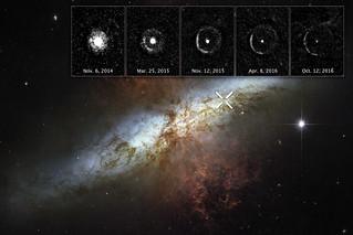 Echo of a Supernova