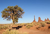 Tree and totem pole (gorbould) Tags: 2017 monumentvalley navajotribalpark usa utah america butte buttes southwest totempole