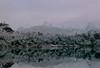 Bariloche - Argentina (dom mesquita) Tags: olympusom1 zuikolens zuiko50mm 135mm 35mm analog analogphotography film filmphotography fotografiaanalógica filme kodak kodakfilm expiredfilm kodakportra portra400 montain patagonia argentina bariloche