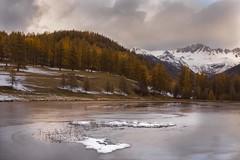 Automne lac du roux-3 (jluclac) Tags: automne eau france french lacduroux lacs paysages queyras water lake