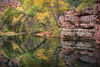 Sycamore-Canyon-6604-Edit-Edit (Michael-Wilson) Tags: sycamorecanyon sycamorecreek arizona michaelwilson fall autumn trees reflection pond pool water southwest canyon verdevalley