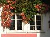 Schnell eilen Jahr auf Jahre hin (amras_de) Tags: hofheimamtaunus hofheim taunus fenster venster finestra okno vindue window fenestro ventana aken leiho ikkuna fenêtre fuinneog prozor ablak gluggi fënster langas logs vindauge vindu fenèstra janela fereastra windae fönster pencere