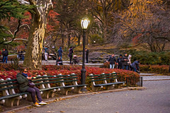 1341_0286FLOP (davidben33) Tags: newyork central park street streetphotos people nature trees bushes leaves colors green yellow blue sky cloud lake portraits women girl cityscape landscape autumn fall 2017 beauty