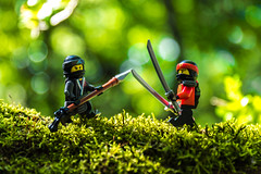 Dueling in the woods (Ballou34) Tags: 2017 7dmark2 7dmarkii 7d2 7dii afol ballou34 canon canon7dmarkii canon7dii eos eos7dmarkii eos7d2 eos7dii flickr lego legographer legography minifigures photography stuckinplastic toy toyphotography toys stuck in plastic duel ninja ninjago fight woods moss tree cazevieille occitanie france fr