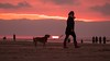 Dog & owner (Drummerdelight) Tags: into sun sunlight intothesun sunlightset