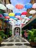 WhenTheSunShinesWeShineTogether (BphotoR) Tags: bphotor umbrella schirme umbrellas hanging colors sunshine summer