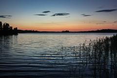 IMG_4158-1 (Andre56154) Tags: schweden sweden sverige wasser water see lake ufer abend sonnenuntergang sunset abendrot afterglow himmel sky schilf reet