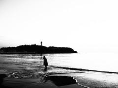 beach (osanpo_traveller) Tags: japan beach shonan olympus penf mzuiko 17mm