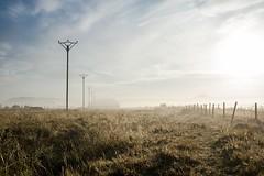 La Borie de l'Aubrac, Nasbinals, Lozère (lyli12) Tags: aubrac brume lozère mist paysage landscape languedocroussillon campagne nature leverdesoleil nikon france d7000