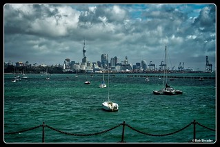 Auckland Across the Harbor