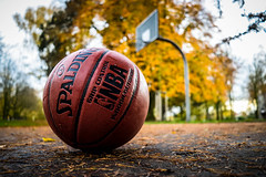 Autumn (#fuerstlife) Tags: fuerstlife autumn herbst photography fotografie ball spalding basketball streetlife colors picture 2017 ruhrpott dortmund