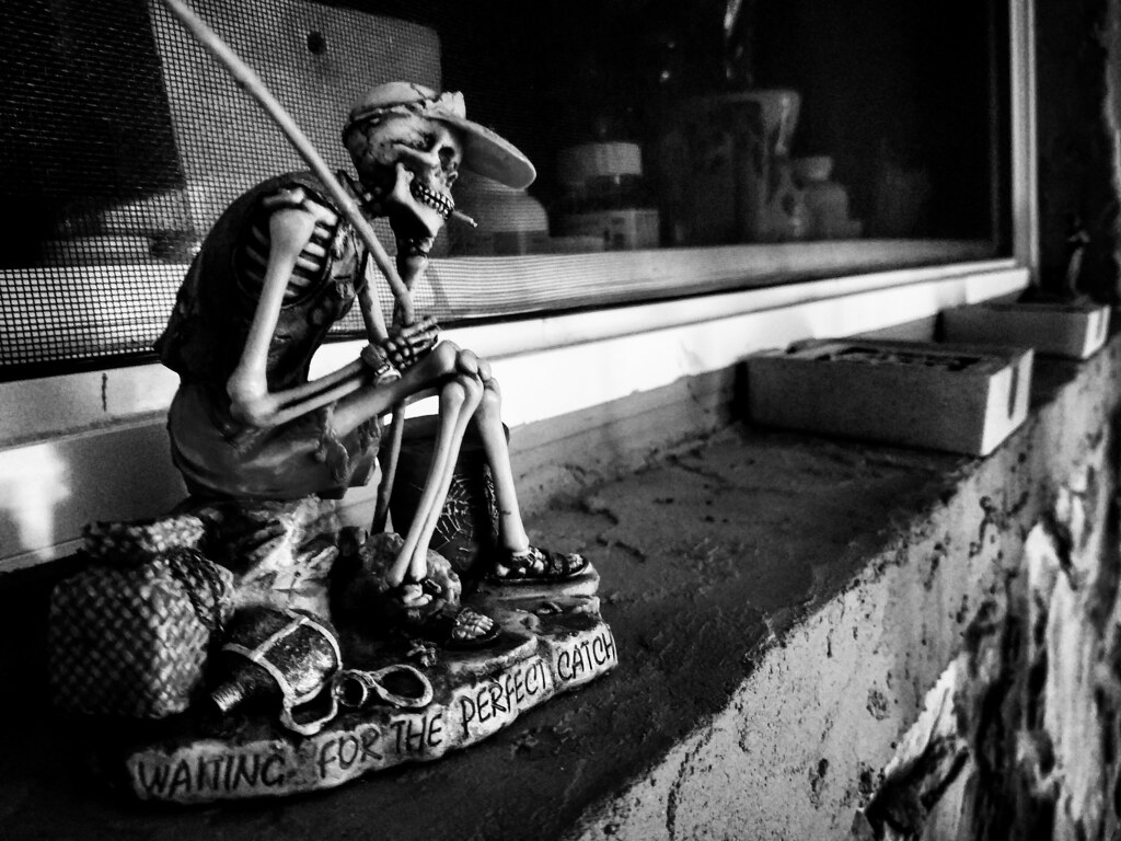 The World's Best Photos of skeleton and waiting - Flickr