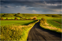 How Green is my Vale (JayTeaUK) Tags: wiltshire hackpenhill whitehorse autumn light green road countryside rural