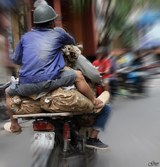 """ Go Fast "" delivery Hanoi (Vietnam) (Guy World Citizen) Tags: street speed delivery fast motocycle urban hanoi vietnam ngc"