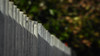 Plain Corrugate Fence (Theen ...) Tags: adelaide bokeh city corrugated diagonal fence foliage galvanised green iron lumix metal orange plain shadow theen thick