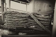 Lines_101565m (gpferd) Tags: boat equipment libertyship monochrome photography ssjohnwbrown vehicle baltimore maryland unitedstates us