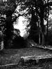 Ruine (Pico 69) Tags: ruien burg wald verlassen einsam sw pico69