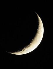 Portrait Challenge (Corgibird) Tags: moon solar sky solarsystem lunar night nightsky planets astronomy portrait