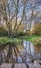 From the bridge pano (Beale.UK) Tags: suttonpark suttoncoldfield parks outdoors landscape landscapes bealeuk