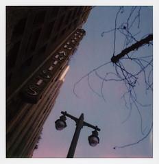 United Artists Sign (tobysx70) Tags: polaroid originals color sx70 instant film sx70sonar sonar united artists sign festival of disruption the theatre at ace hotel broadway dtla los angeles la california ca neon movie theater cinema concert venue street light blue sky tree silhouette david lynch toby hancock photography