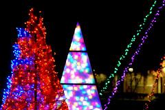 RWP_2159-1 (jouno53) Tags: christmas holiday nikon lights bokeh rainbow tamron ge lighting nela park cleveland