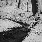 Snow 2 thumbnail