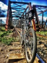BikeMe (thejaca) Tags: mtb qool thejaca element rower bike rockymountain