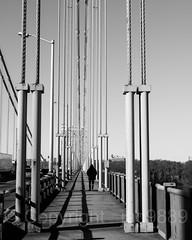 North Sidewalk of the George Washington Bridge, North Jersey - New York City (jag9889) Tags: 2017 20171206 bw blackandwhite bridge bridges bruecke brücke cable crossing gw gwb georgewashingtonbridge hudsonriver infrastructure k007 manhattan monochrome ny nyc newyork newyorkcity northwalk outdoor pedestrian people pont ponte puente punt river sidewalk span structure suspensionbridge usa unitedstates unitedstatesofamerica uppermanhattan vertical wahi walkway washingtonheights water waterway jag9889