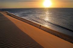 Adónde va la sorpresa casi cotidiana del atardecer ? (alestaleiro) Tags: atardecer duna belleza sol sole sunset dune jeri jericoacoara solo alone man silouhette silueta pequeño sun tramonto pôrdosol alestaleiro