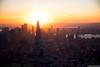 (kayters) Tags: newyorkcity kaytedolmatchphotography kathleendolmatch aerial sunset freedomtower worldtradecenter manhattan newyork architecture buildings cityscape october fall autumn layers orange yellow shadows