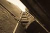 EPMG Mono-Sepia November 2017-13 (Philip Gillespie) Tags: epmg edinburgh photography meetup group scotland mono monochrome black white blackandwhite bw canon 5dsr editing lightroom old age ancient town city 2017 november sky clouds windows tree bush grass arch close street lamp statue