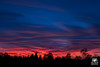 Viral sunset (andrea.prave) Tags: natura nature 自然 eðli cielo sky himmel ciel 空 سماء céu 天空 небо nuvole clouds سحاب облака nubes nuages 雲 wolken nuvens עננים campagna country 国 pays מדינה بلد 国家 land país страна ülke tramonto sunset atardecer solnedgång solnedgang 夕焼け غروب 日落 שקיעת שמש coucherdusoleil ηλιοβασίλεμα zonsondergang pôrdosol закат puestadelsol sonnenuntergang strano hashtag viral virale autunno fall autumn 秋 automne otoño herbst осень color colour colore couleur اللون 颜色 цвет farbe cor 色 29ottobre2017