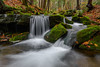 State Game Lands #42 (clare j kaczmarek) Tags: stategamelands42 waterfalls mountainstreams autumn moss laurelhighlands forests