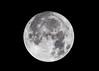 Super Moon (Eric Nally) Tags: moon supermoon coldmoon outdoors night cold moonlight nightlights sky nightsky space lunar astrophotography kentucky louisville louisvillekentucky canon 80d sigma 150600