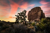 Desert Sky (Chigrboy2012) Tags: joshuatree sunset rocks boulder california cactus longexposure