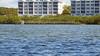 Boating in Sarasota (soniaadammurray - Off) Tags: digitalphotography sarasota florida usa boating dock water sea trees land architecture seascape fences hff nature people relax
