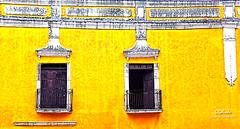 IMG_0298 Windows (Cyberlens 40D) Tags: canon mexico yucatan buildings walls windows yellow streets colonial elitegalleryaoi bestcapturesaoi aoi