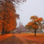 Very golden autumn thumbnail
