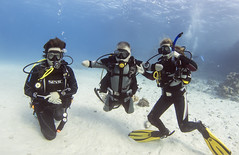 quadruple amputee man takes diving course 30 (KnyazevDA) Tags: disability disabled diver diving deptherapy undersea padi underwater owd redsea buddy handicapped aowd egypt sea wheelchair travel amputee paraplegia paraplegic
