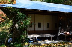 House with Syoji (*suika *) Tags: house mountainside japanesestyle oldhousebutlovely japan autumn 栃木県鹿沼市 白井平橋周辺 紅葉の季節 家屋